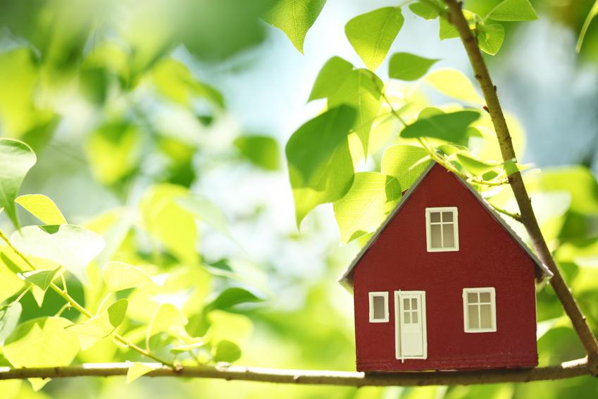 Как расприватизировать квартиру возможные нюансы