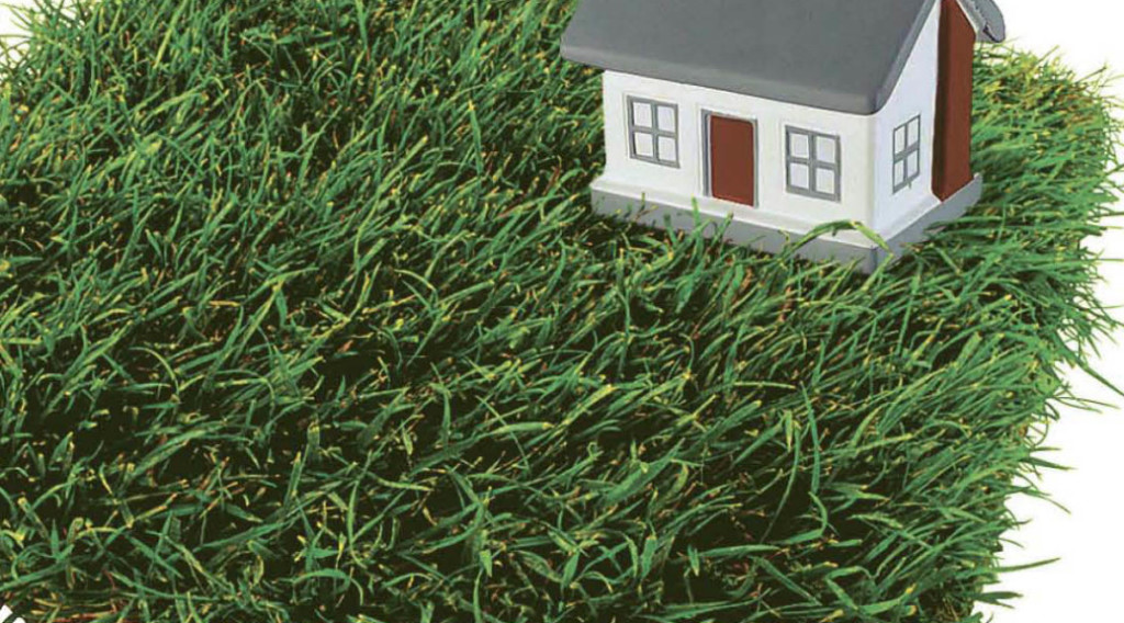 Что такое обременения земельного участка - виды и продажа