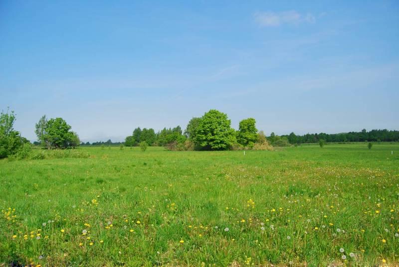 Кто регистрирует право собственности на землю