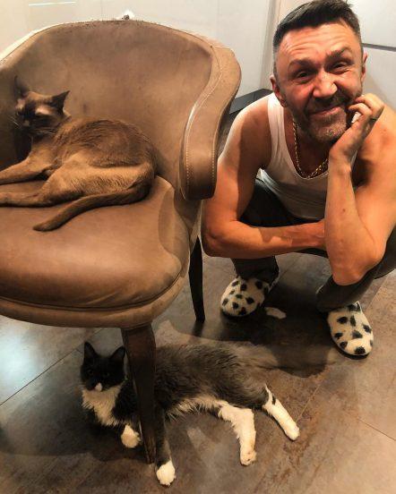 Сергей Шнуров и его коты