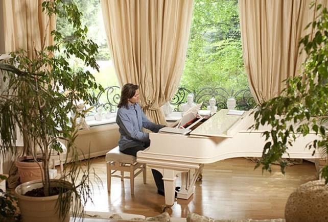 Дмитрий Маликов за фортепиано